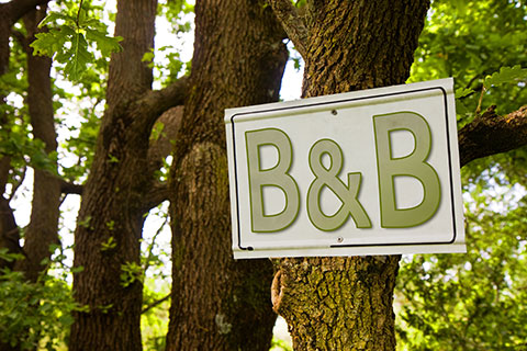 Photo of Bed and Breakfast sign in bushland attached to tree.