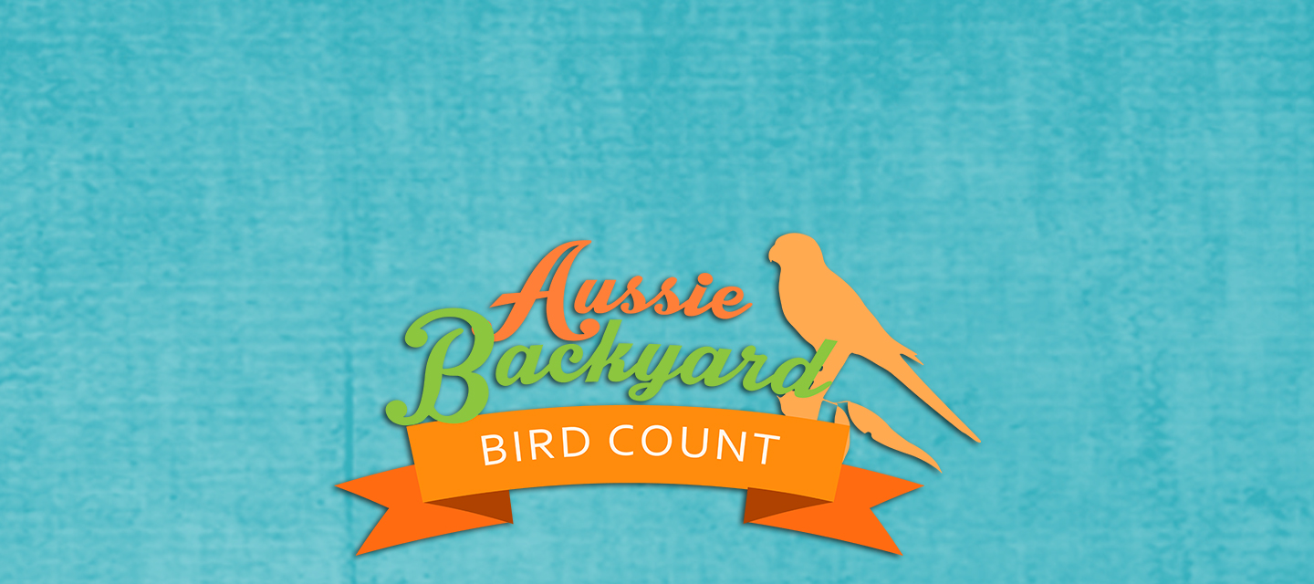 Aussie Backyard Bird Count - Landcare Bird Identification Walk