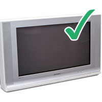 Picture of older style television with tick