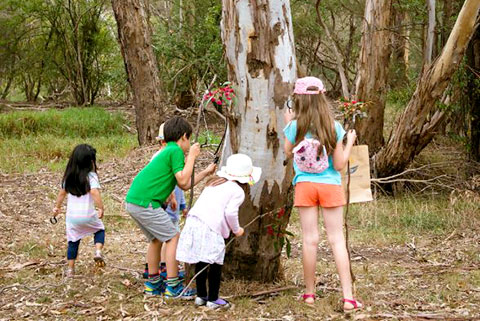 Photo of Kids playing around a tree at Finns Reserve